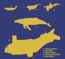 Whale Comparison Chart, NC T-Shirt