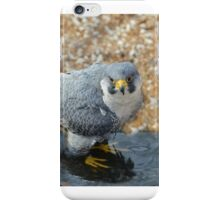 Beautiful Bird Playing in water iPhone Case/Skin