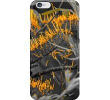 Grevillea in Yellow iPhone Case/Skin