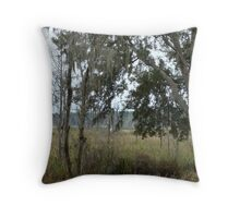 Morning - time to fish Throw Pillow