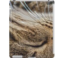 Dreaming of Mice (Amazing Challenge Entertainment) iPad Case/Skin