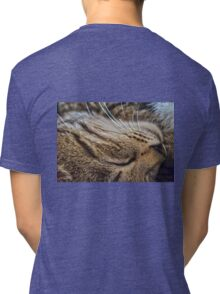 Dreaming of Mice (Amazing Challenge Entertainment) Tri-blend T-Shirt