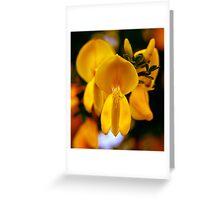 yellow wonder ... Greeting Card