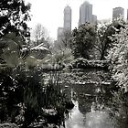 Melbourne from the Botanical Gardens by Roz McQuillan