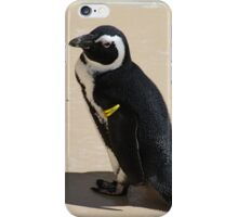 Another Cute African Penguin iPhone Case/Skin