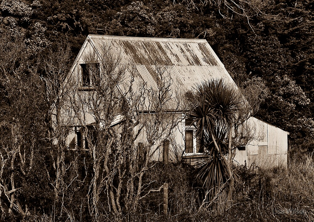 'Past abode' by Lisa Wilson
