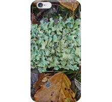 Loaded with Lichen iPhone Case/Skin