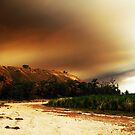 Australian Country A Blaze by Michael Humphrys