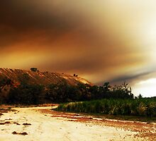 Australian Country A Blaze by Michael Humphrys
