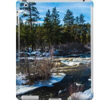 A Peaceful River  iPad Case/Skin