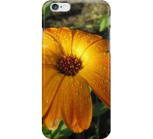 Marigold in Rain iPhone Case/Skin