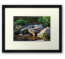 WATER WATER Framed Print