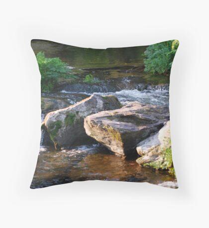 WATER WATER Throw Pillow