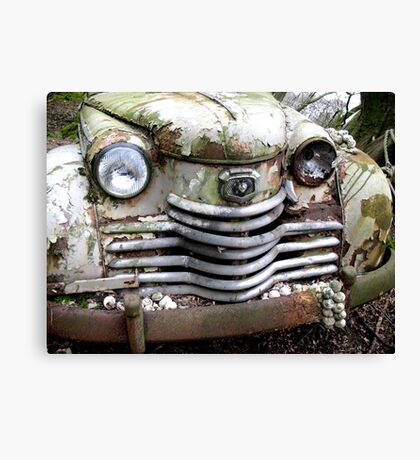 Whitey Rust Canvas Print