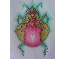 Gold bug with rose-quartz belly Photographic Print