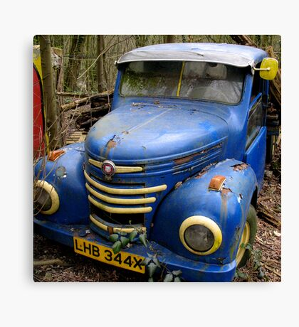 Blue Rust Canvas Print