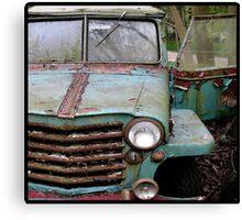 Range Rust Canvas Print