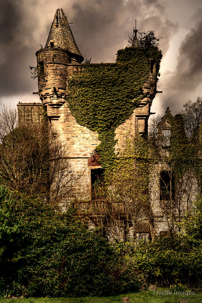 Castle Turret by Linda  Morrison