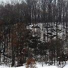 Spring Snowstorm by elasita