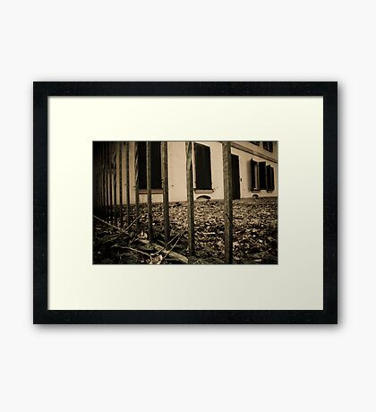 dead leaves. Framed Print