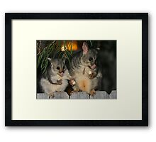 A Mother's Love! Framed Print