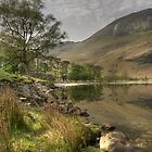 Buttermere South Bank by Jonnyfez