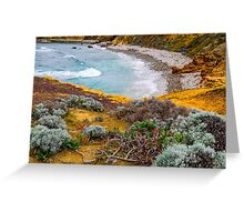 Rugged and windswept Greeting Card