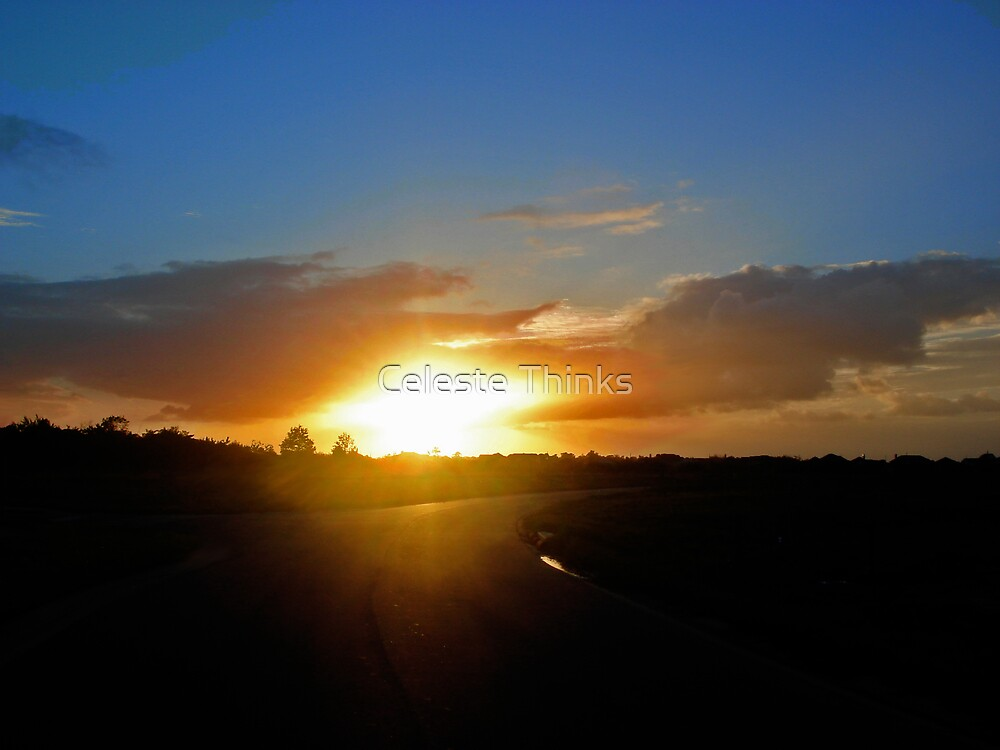 Floridian Sunset Road by Celeste Thinks