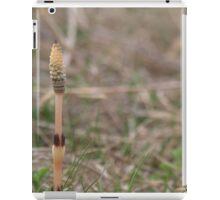 Striped Reed iPad Case/Skin