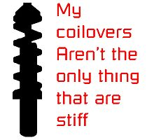 Stiff Coilovers COLORS Photographic Print