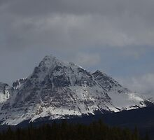 Mt Fitzwilliam by Kathi Arnell