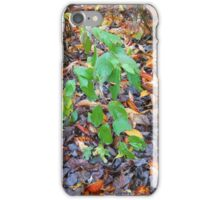 On the Threshold of Winter iPhone Case/Skin