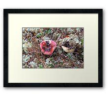 Mushroom Magic Framed Print
