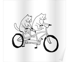 Cats on a Bike Poster