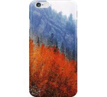 Little Cottonwood Canyon iPhone Case/Skin