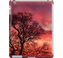 Love from the Sky iPad Case/Skin