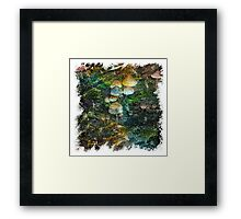 The Atlas Of Dreams - Color Plate 123 Framed Print