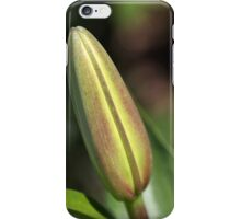 She Buds Then Flowers - Lily Bud iPhone Case/Skin