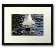 Icicles on Mona Lake Framed Print