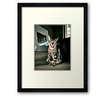 Oh That's A Good One!  Framed Print