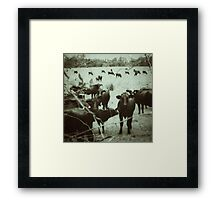 The Day You Got Caught Framed Print