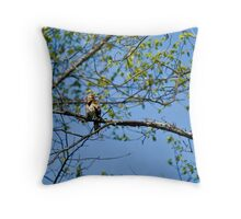 Nothern Flicker Throw Pillow