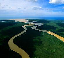 Kinabatangan River by jtanphotography
