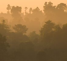 Dawn at Kinabatangan by Jollence Lee