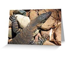 Goanna Dreaming Greeting Card