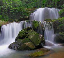 Landscape Of Borneo by Jollence Lee
