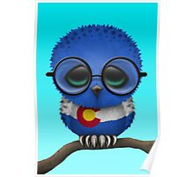 Nerdy Colorado Baby Owl on a Branch Poster