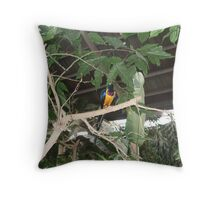 Visually stunning exotic brightly coloured bird. Throw Pillow