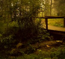 Bridge No 1 by Rosalie Dale