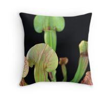 Trumpet Pitcher Paradisia Green Sarracenia   Throw Pillow